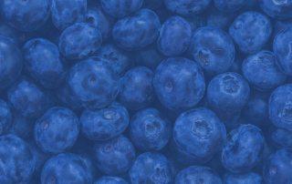 Parallax-blueberry